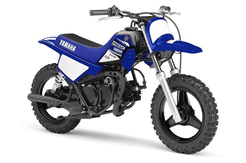 <em>Yamaha TT-R 250 Motorcycles</em> for Sale